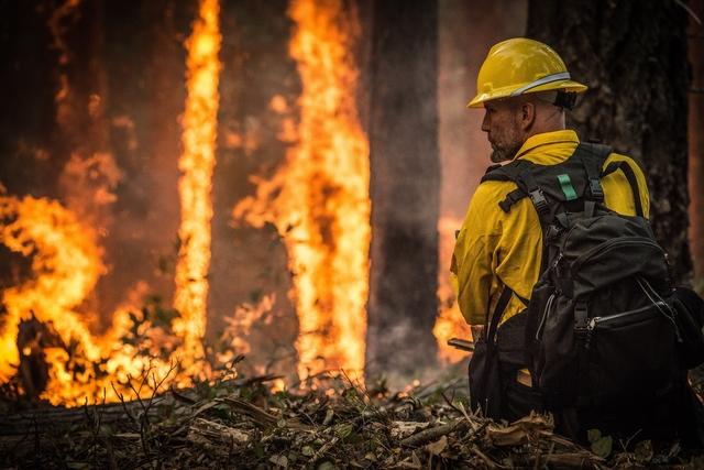 Bushfire disaster – a cautionary insurance lesson
